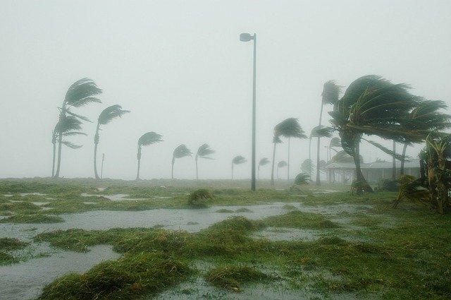 2019 U.S. Hurricane Season and Survival