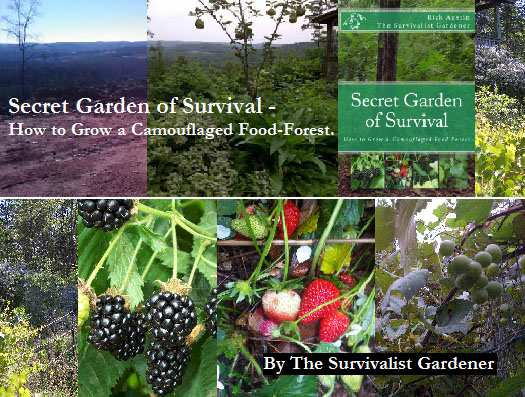 Secret Garden of Survival – How to Grow A Camouflaged Food Forest