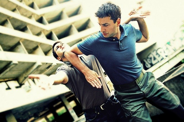 Reality Martial Arts: Immobilizing and Lethal Strikes of Special Forces