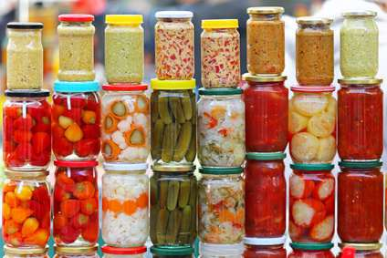 Top 10 Best Fermentation Survival Foods